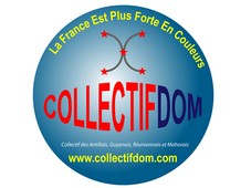https://blogcollectifdom.files.wordpress.com/2012/08/logo-collectifdom.jpg