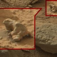 Photos prises sur Mars : Les signes de la vie ou... simple vue de l'esprit ?