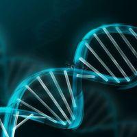 Séquençage du plus ancien génome humain d'Afrique