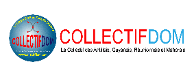 mini bandeau-collectifdom-couleur-2013-web