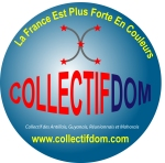 Logo COLLECTIFDOM couleur